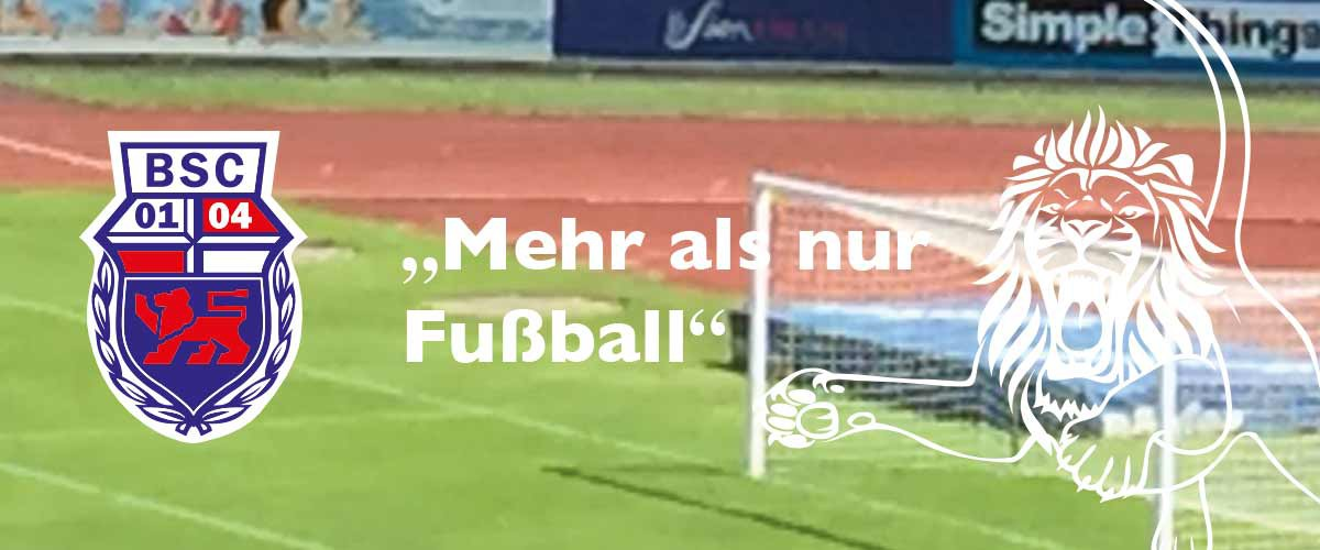 Bonner-SC-Loewe-mehr-als-nur-fussball